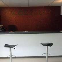 showroom (7)